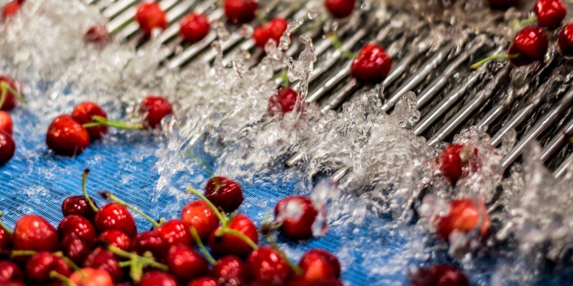 Originia Foods - Infrusesa